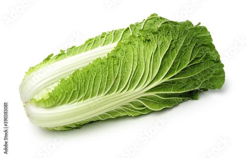 Fényképezés Chinese cabbage on white background