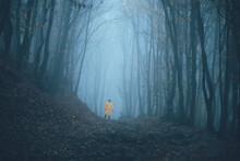 Man Got Lost In A Spooky Foggy...
