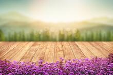 Beautiful Verbina Flowers Fron...