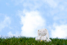 Cute Easter Bunny Toy Sitting Alone On Spring Grass Fields On Sunny Day Morning, White Rabbit Doll Sitting Alone On Green Meawdow In Summer Against Blue Sky And Cloudy,Lost Kid Toy Falling On The Park