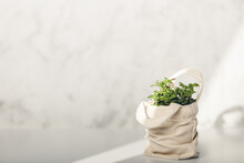 Baby Plant Against White Marble Wall In Tote Bag. Home Decor, Zero Waste, Eco Friendly Sustainable Life Style Concept