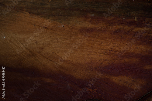 Papel de parede photo of tree texture, showing tree bark