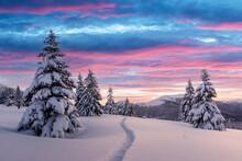 Fantastic Winter Landscape In ...