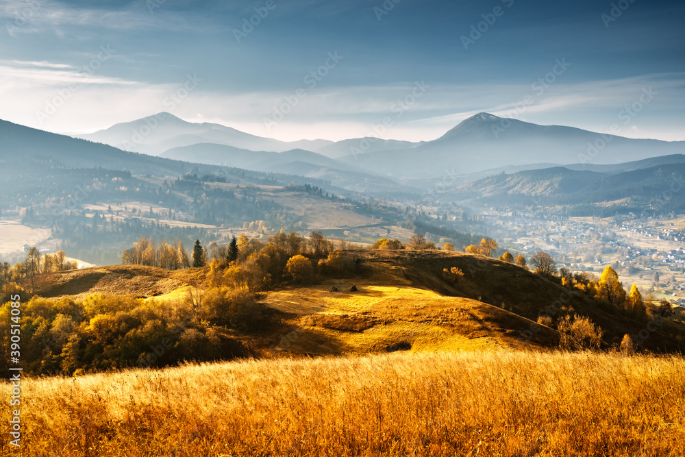 Fototapeta Picturesque autumn mountains with yellow grass and orange trees in the Carpathian mountains, Ukraine. Landscape photography