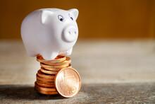 Czech Economy Nad Finance, Piggy Bank And Savings - Czech Crown Coin