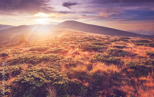 Carpathian mountains #390547288