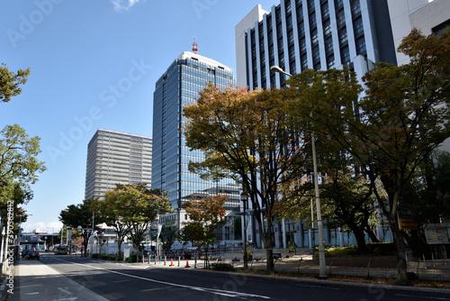 Obraz na plátně 大阪府堺市堺東中心街