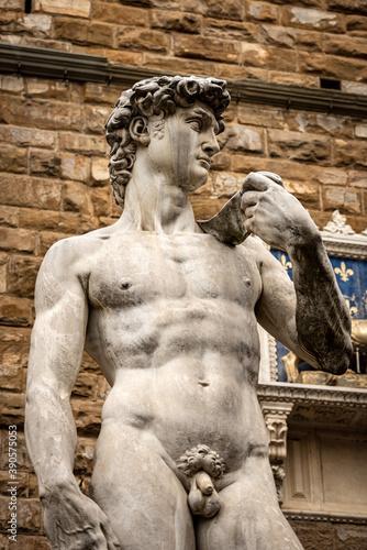 Obrazy Michał Anioł Buonarotti  closeup-of-statue-of-the-david-by-michelangelo-buonarroti-masterpiece-of-renaissance-sculpture
