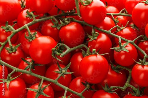 Fresh ripe cherry tomatoes as background, closeup Fototapet