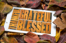 Thankful, Grateful And Blessed...