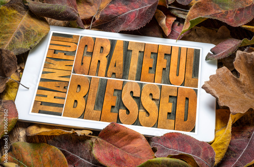 Obraz thankful, grateful and blessed - abstract in vintage letterpress wood type on a digital tablet against dry leaves background, Thanksgiving theme and greeting card - fototapety do salonu