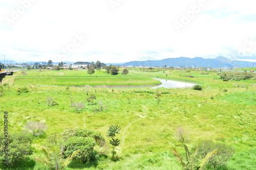 Foto rio campo pasto sabana
