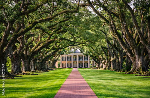 Canvas Print Oak Alley Plantation