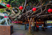 Penghu Island (Pescadores) Taiwan October 14, 2019  A Huge Tree Near The Temple Is Decorated With Chinese Folk Red Pendants With Symbolic Wishes And Traditional Red Lanterns