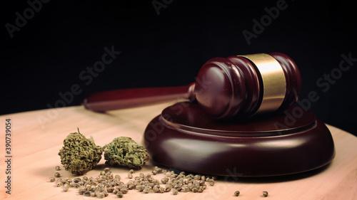 Fototapeta Cannabis, marijuana and hemp products on court table with judges gavel