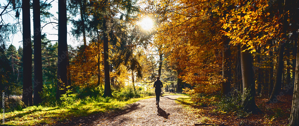 Fototapeta Female Runner in Silent Forest in spring with beautiful bright sun rays