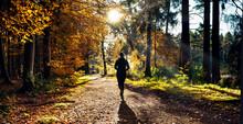 Female Runner In Silent Forest...