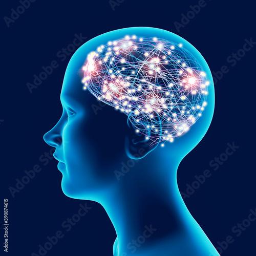 Obraz na plátně Brain development in children and teens