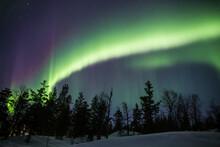 Aurora Boreal Sobre Bosque En ...