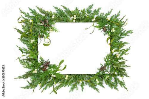Mistletoe, juniper fir & cedar cypress leylandii winter greenery border on white with copy space Fototapet