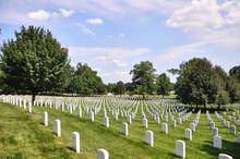 Cementerio Con Cruces Blancas ...
