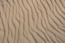 Texture Of Sand Leveled By The...