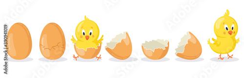 Fotografie, Tablou Cartoon hatched easter egg