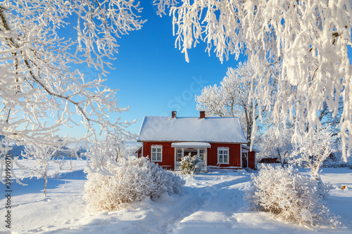 Leinwand Poster Red cottage in a beautiful cold winter landscape