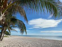 Tropical White Sandy Beach Loo...