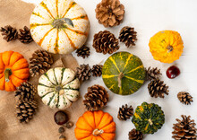 A Spread Of Various Pumpkins And Pinecones On Burlap Cloth - Autumn Themed Background