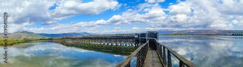 Obraz na płótnie Floating bridge, with wetland landscape, in the Hula nature reserve