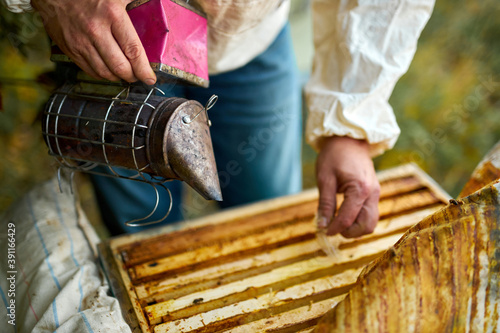 Foto male caucasian beekeeper looks after bees, checks honey