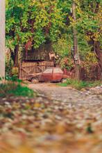 Old Stone House Dacia Car Romania
