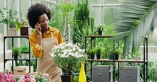 Joyful Young Woman In Flower Shop Standing At Workplace And Calling On Cellphone. Cheerful African American Female Florist Worker In Floral House Chatting On Smartphone. Floristry Concept