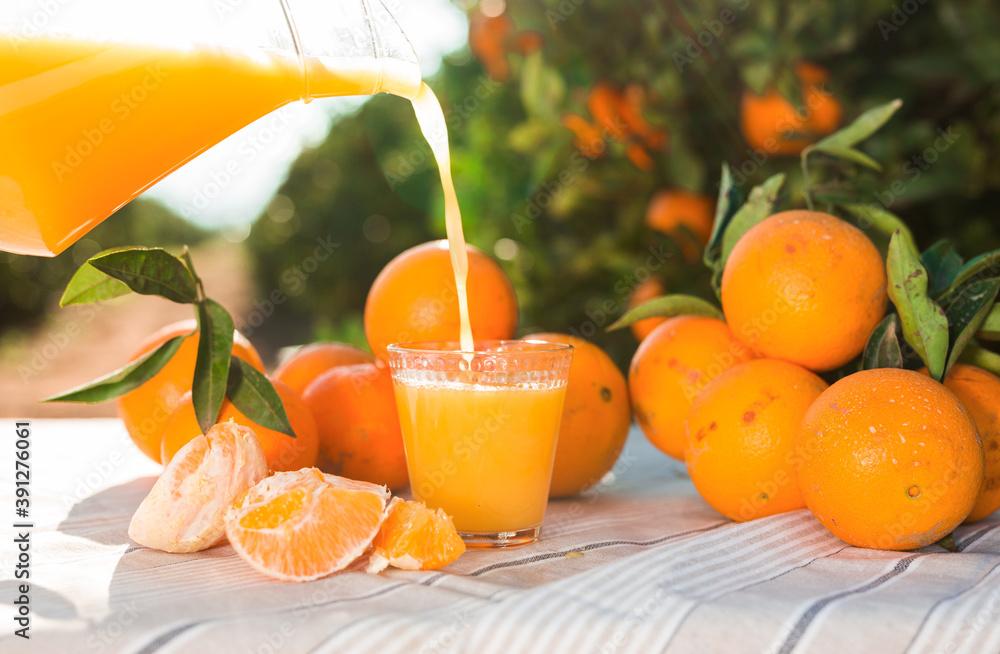 Fototapeta fresh orange juice pouring from jug into glass on table in garden