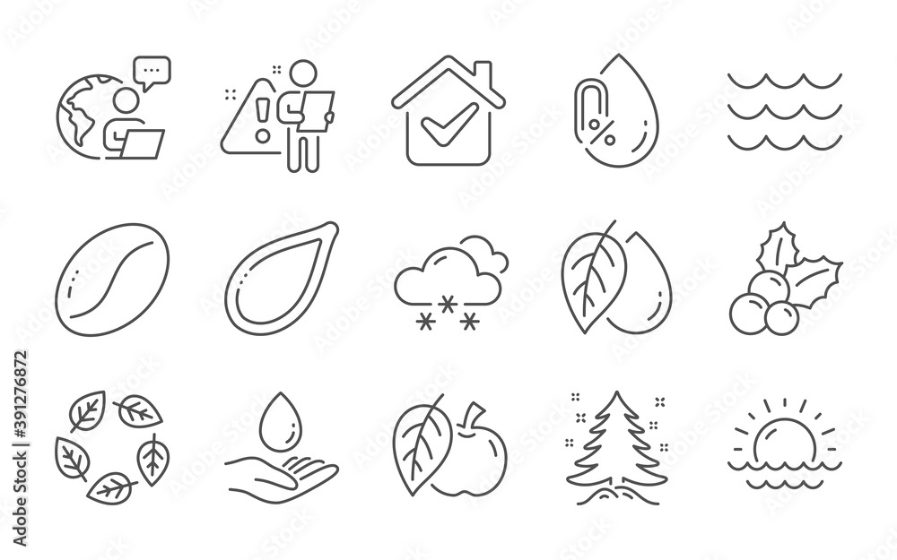 Fototapeta Water care, Organic tested and Snow weather line icons set. No alcohol, Pumpkin seed and Christmas holly signs. Waves, Christmas tree and Mineral oil symbols. Sunset, Apple and Coffee beans. Vector