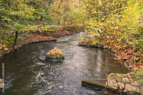 Fotografija View of a stone covered with autumn leaves in a sidearm of the Lahn near Limburg