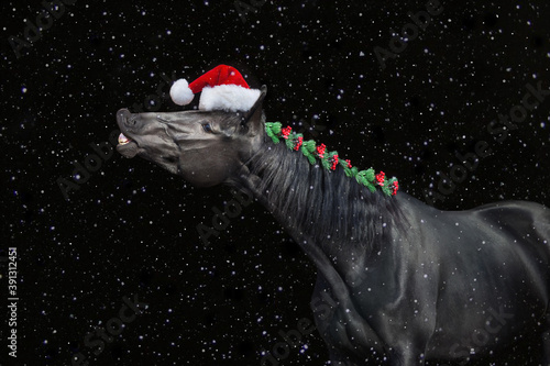 Black horse in christmas decor in santa hat. New Year and Christmas horse