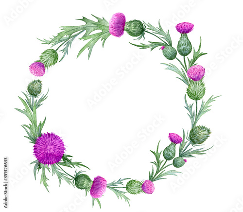 beautiful watercolor wreath with thistles Fototapet