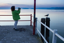 Photographing A Seagull At The...