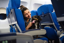 Girl With Her Dog On An Aircraft.