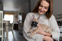 Cute Little French Bulldog Puppy