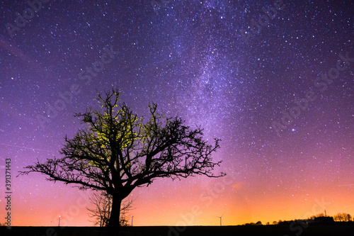 Fotografía Yellow illuminated naked tree in winter fields with milkyway and stars in the ba
