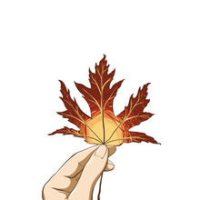 Woman Hand Holding Bright Maple Leaf. Digital Hand Drawn Illustration In Flat Style Isolated On White Background With Space For Your Text. Good For Card, Poster, Web, Invintation, Thanksgiving Design.