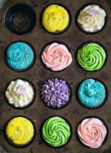 Set Of Delicious Multicolored Cupcakes