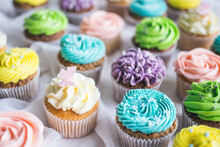 Yummy Cupcakes With Colorful Frosting