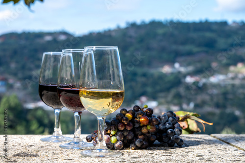 Outdoor tasting of different fortified port wines in glasses in sunny autumn, Do Fotobehang