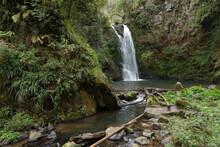 A Waterfall Around Dense Vegetation In Ahila