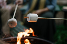 Black Friends Gathering Around Fire-pit Roasting Marshmallows And Eating Smores