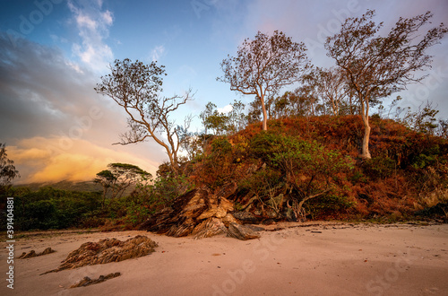 Beautiful shot of a hill with  trees on the beach at sunset at Cairns Cape Tribu Fotobehang